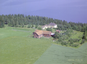 DBB Solberg