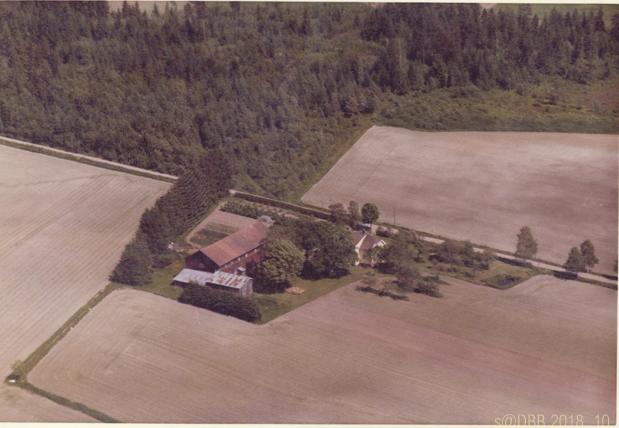 DBB Nygård